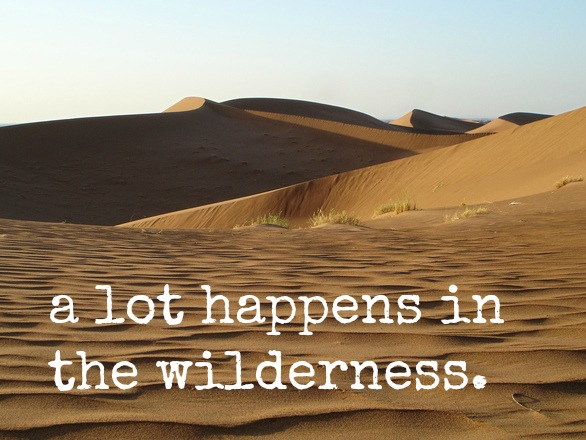 a lot happens in the wilderness