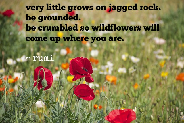 be grounded rumi